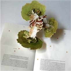 Livres pop up pour Enfants: de beaux ouvrages pour toute la famille…